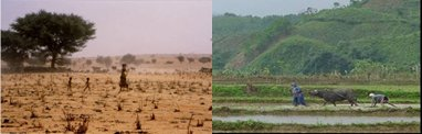 terrestrial-ecosystems-management2